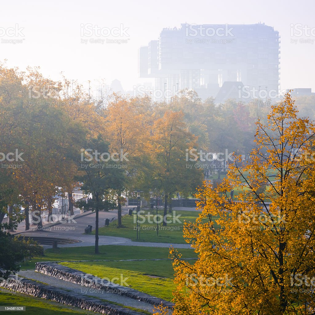 Autumn - morning in Cologne royalty-free stock photo