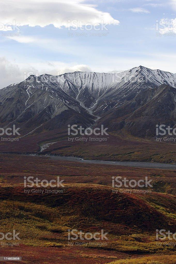 Autumn Morning in Denali royalty-free stock photo