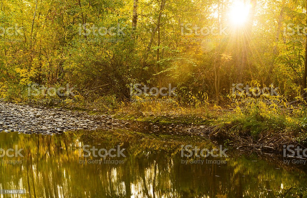 Autumn morning royalty-free stock photo