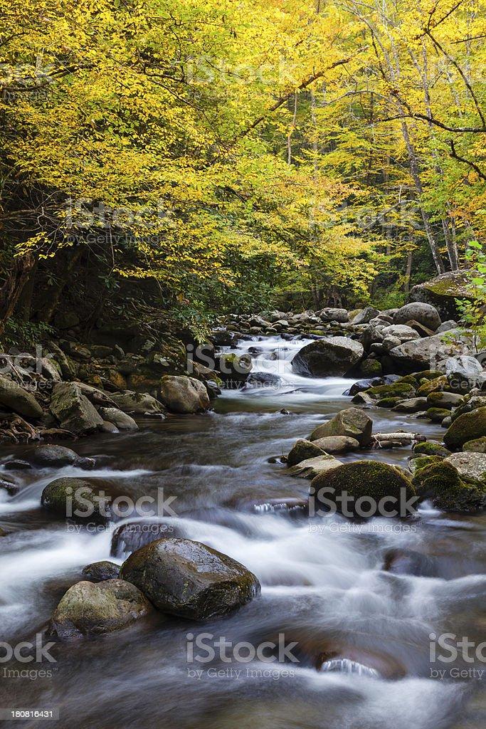 Autumn Mountain Stream royalty-free stock photo