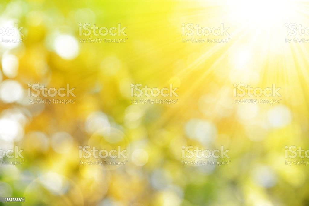 autumn nature background stock photo