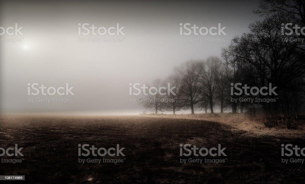 Autumn Nature royalty-free stock photo