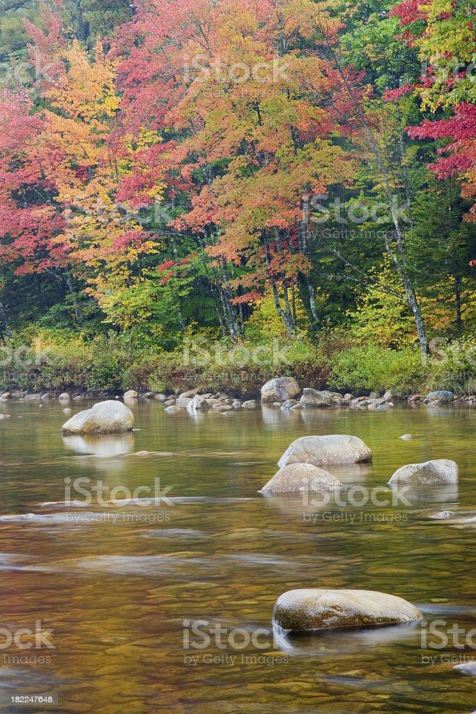 Autumn New England River royalty-free stock photo
