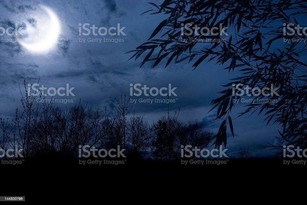 autumn night royalty-free stock photo