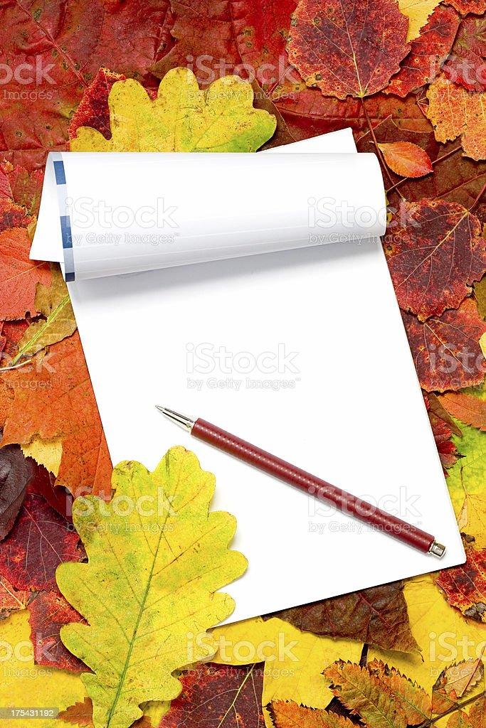 Autumn notes royalty-free stock photo