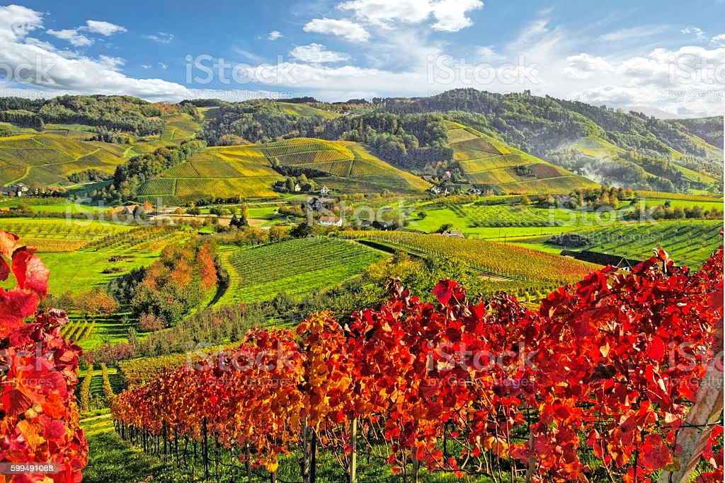 Autumn on a sunny day in Germany stock photo
