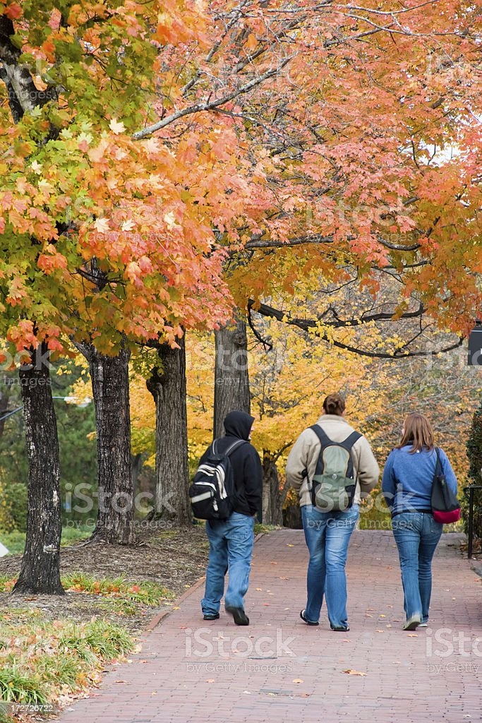 Autumn on Campus royalty-free stock photo