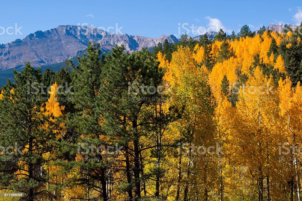 Autumn on Pikes Peak stock photo