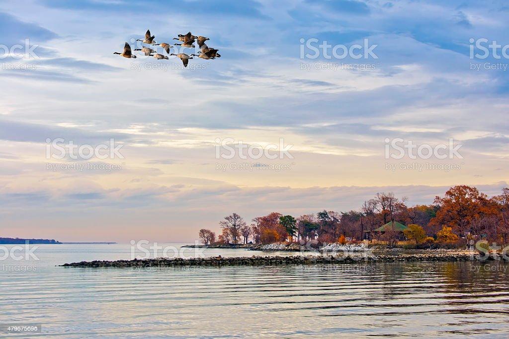 Autumn on the Chesapeake Bay stock photo