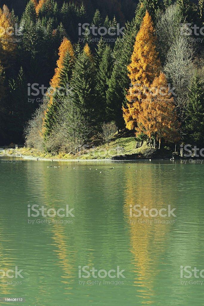 Autumn on the lake stock photo