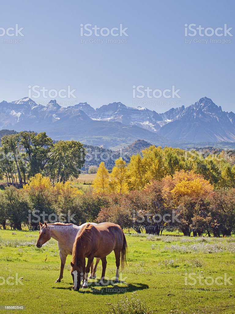 Autumn on the Ranch stock photo