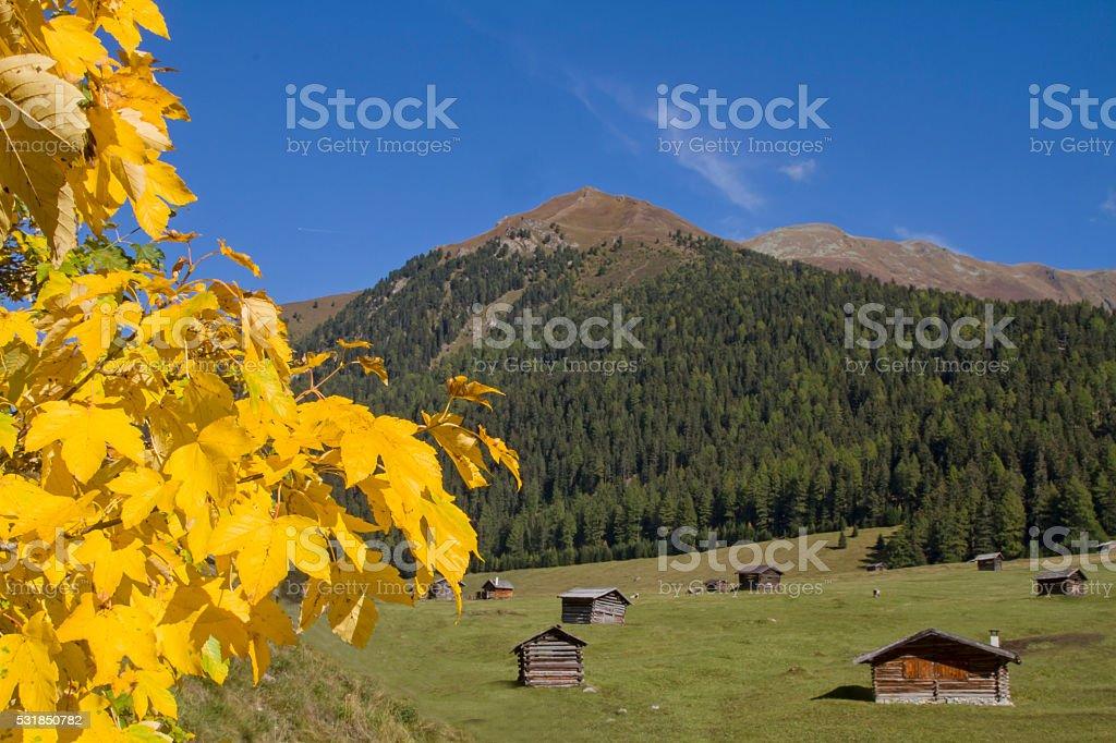 Autumn on the Tschey meadows stock photo