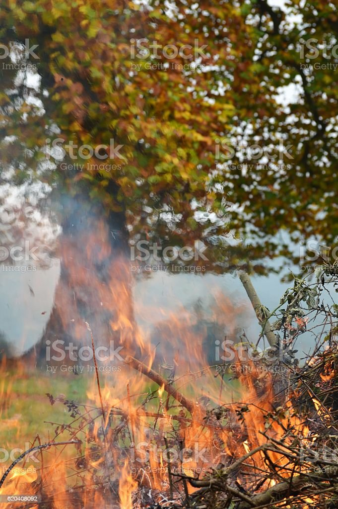Autumn outdoor bonfire. stock photo