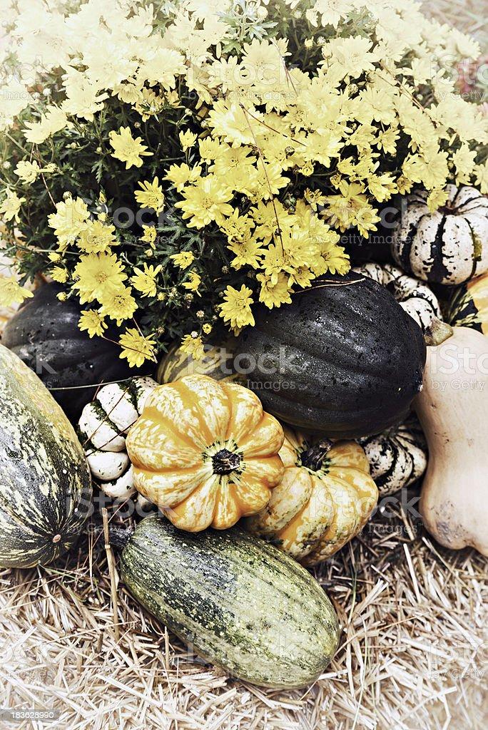 Autumn Outdoor Decor - nostalgic 4 royalty-free stock photo