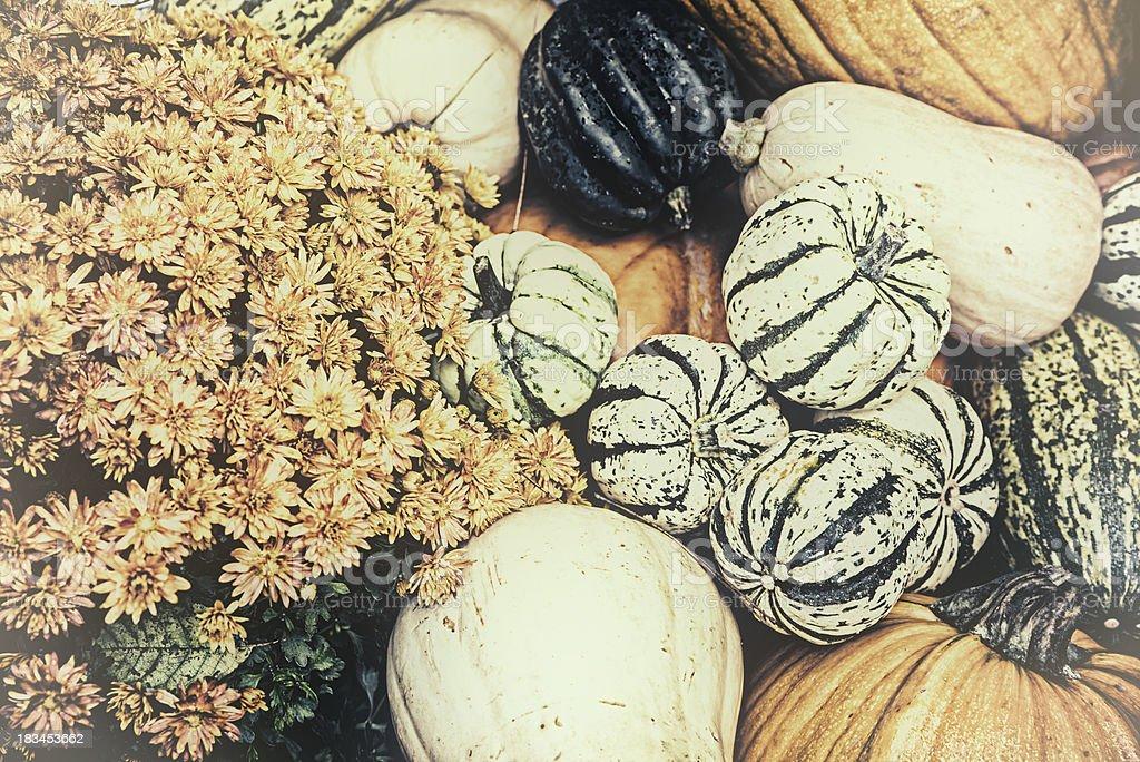 Autumn Outdoor Decor - nostalgic 6 royalty-free stock photo