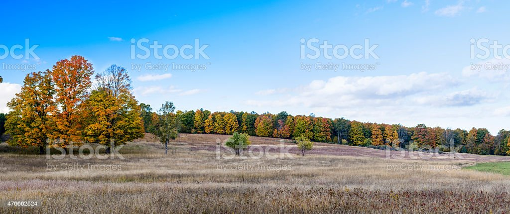 Autumn Panorama, Meadow and Forest stock photo