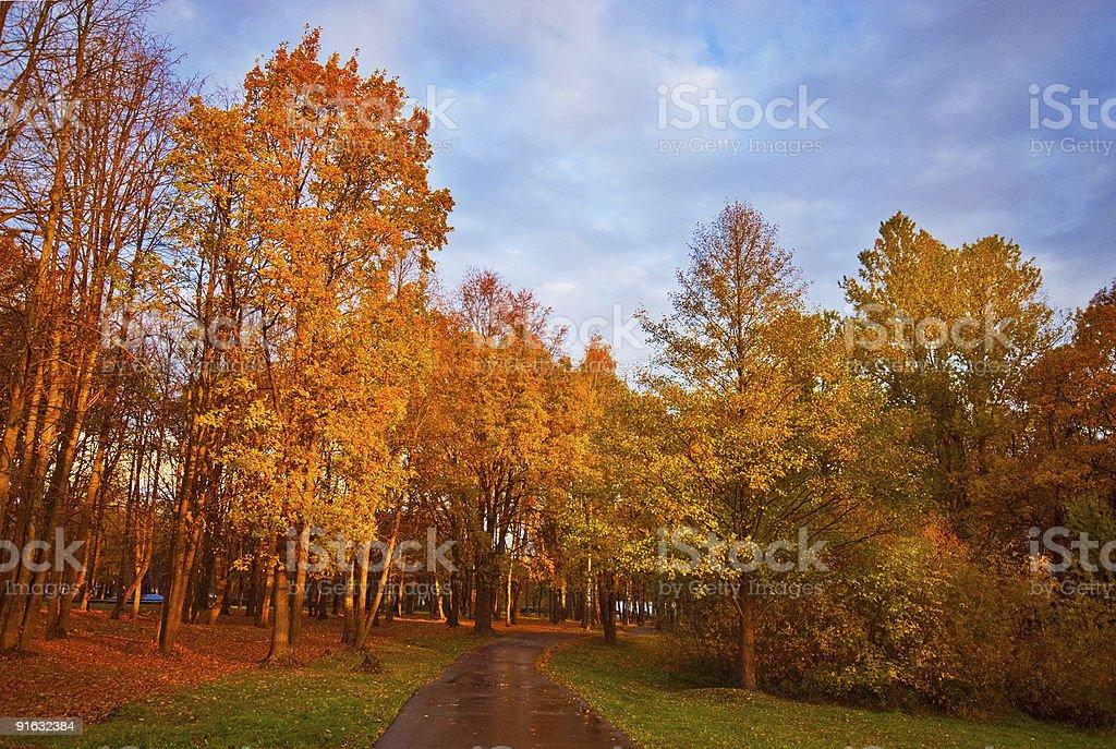 Autumn Park after Rain royalty-free stock photo