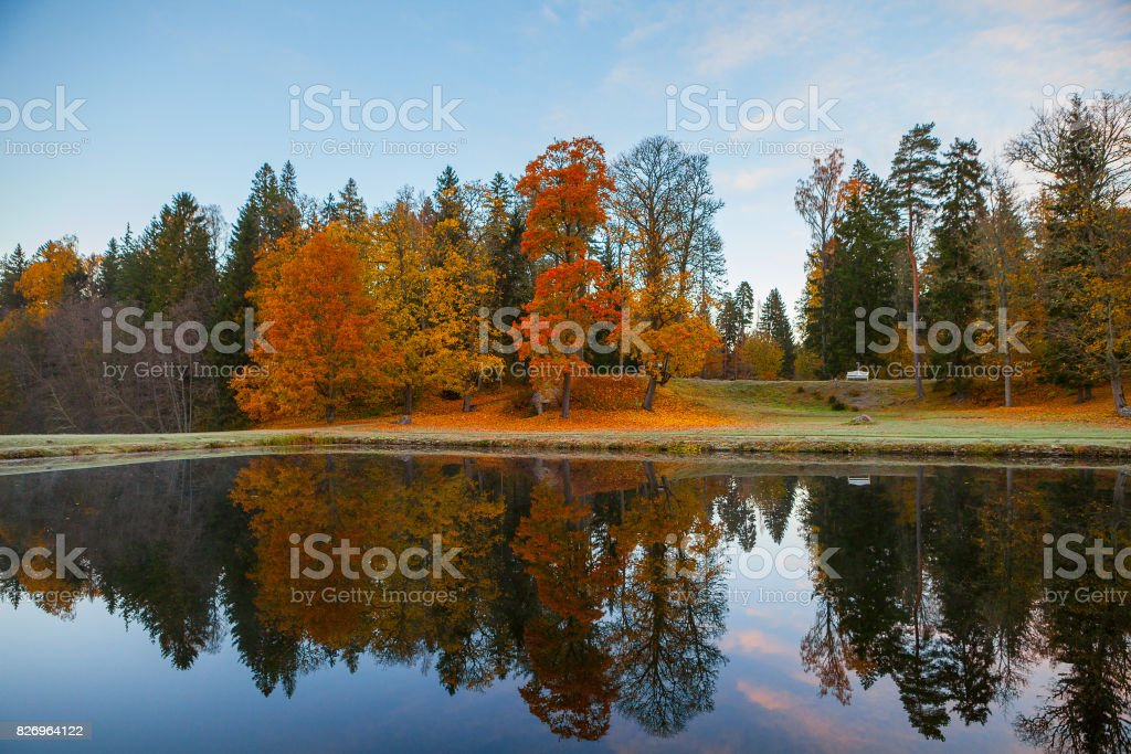 Autumn park around a pond. October fall time. stock photo