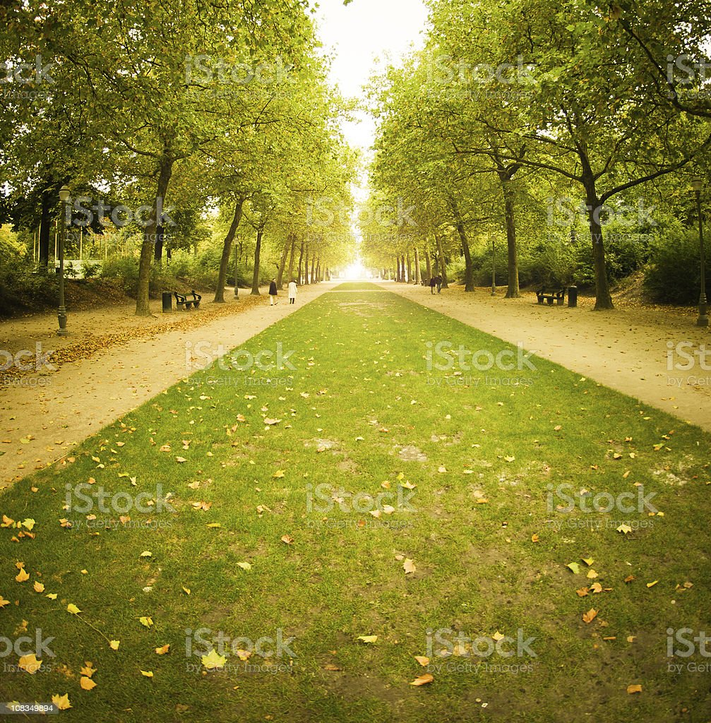 Autumn park in Brussels - Belgium royalty-free stock photo