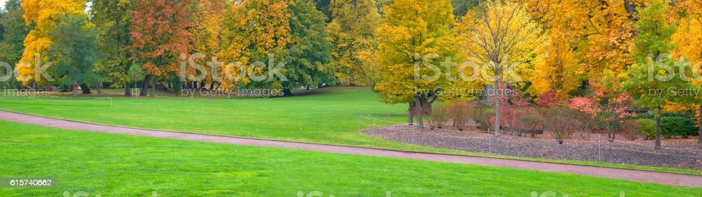 Autumn park panorama stock photo