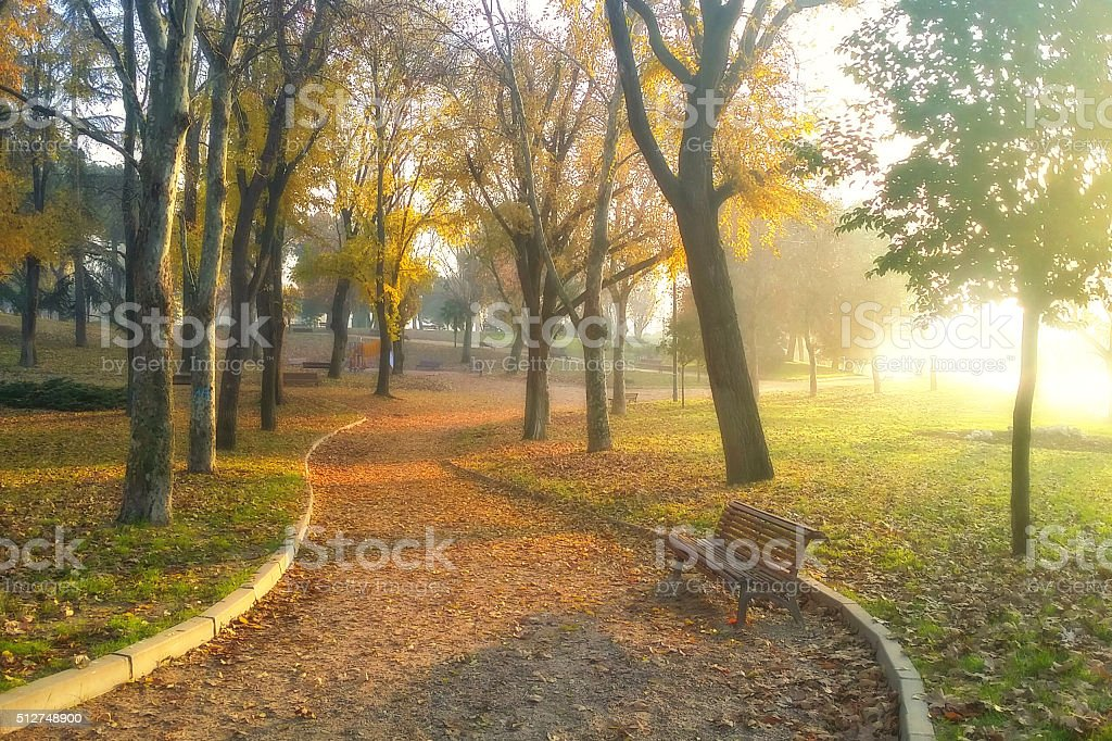 Autumn Park stock photo