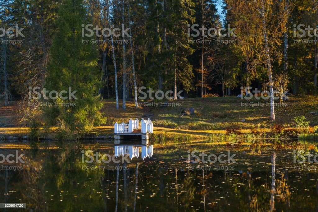Autumn park with a pond and wooden pier on the coast. October fall time. stock photo