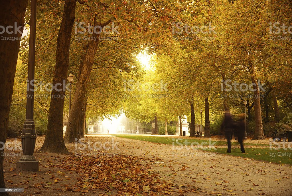 Autumn park with couple in love royalty-free stock photo