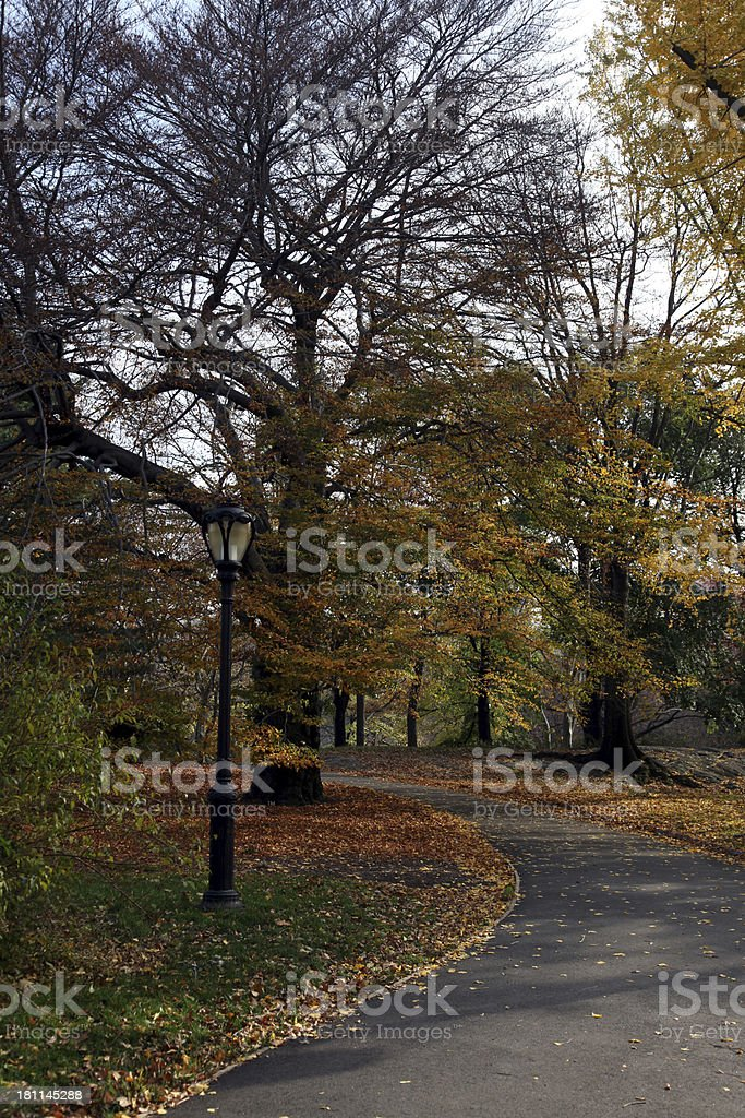 Autumn path in Central Park royalty-free stock photo