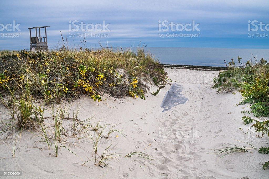 Autumn Pathway to the Beach stock photo