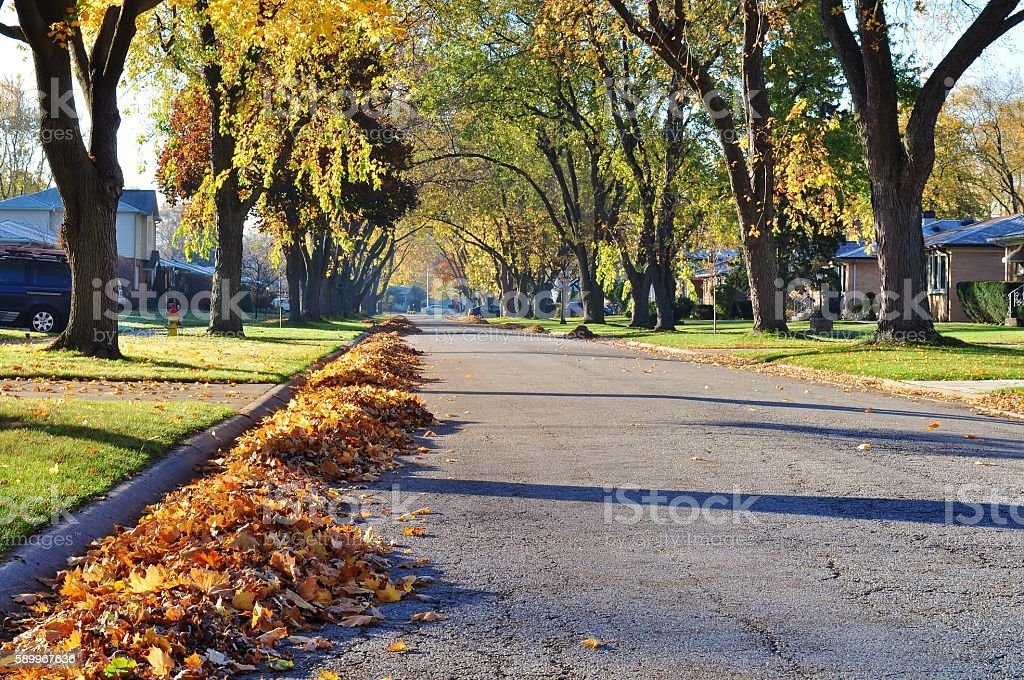 Autumn photo of street and leaf piles. stock photo