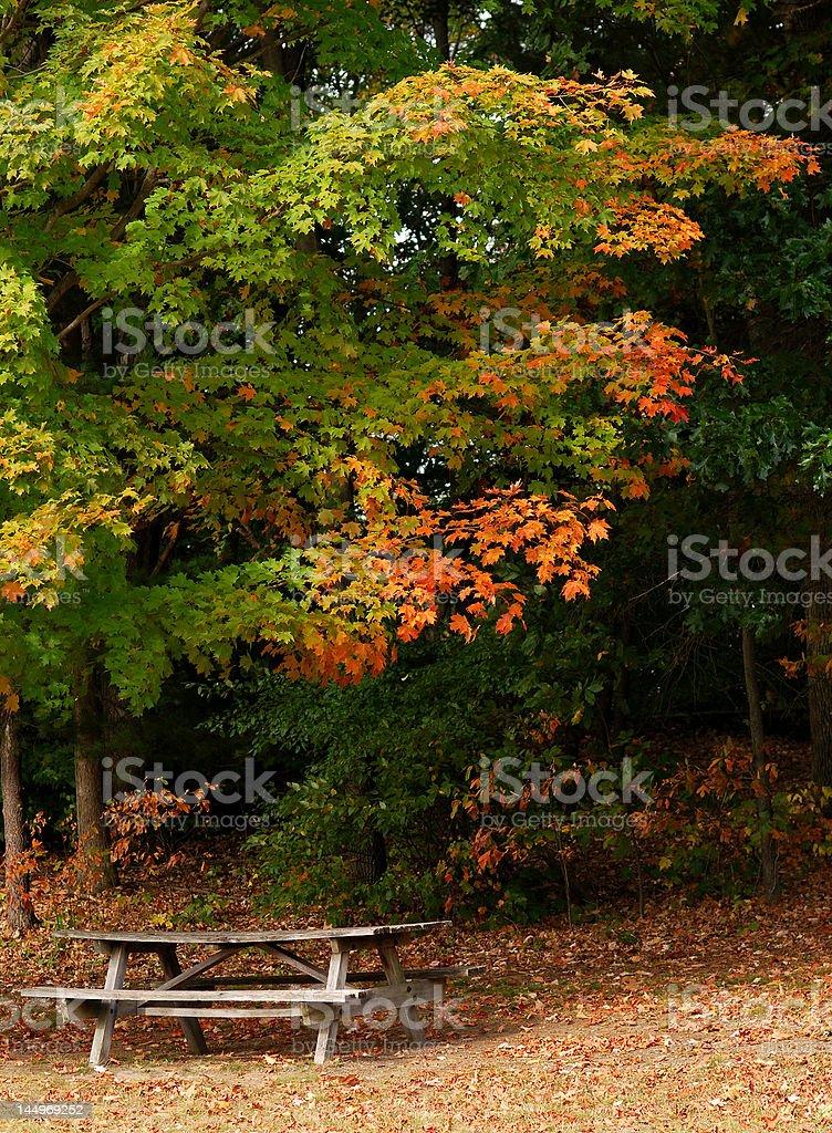 Outono mesa de piquenique foto royalty-free