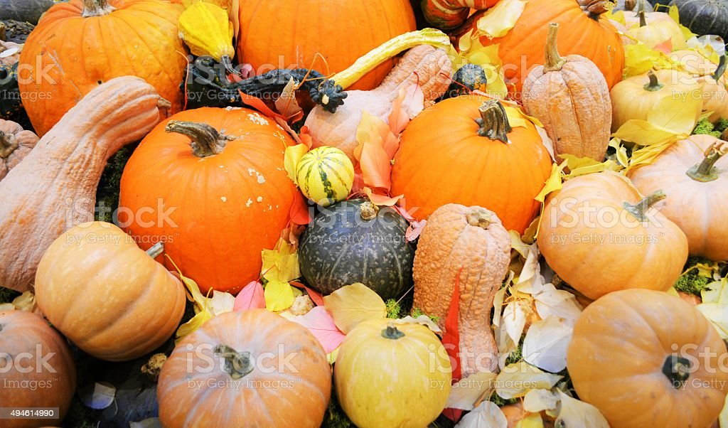 Autunno stock photo