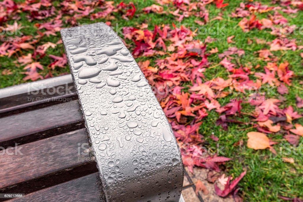 UK autumn stock photo