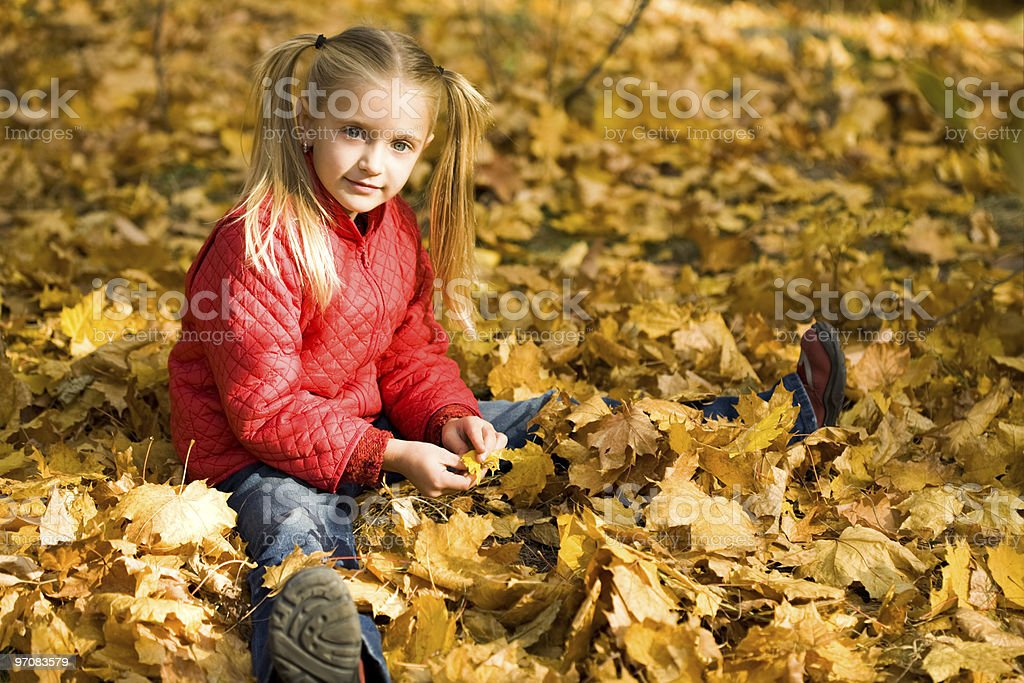 Autumn pleasure royalty-free stock photo