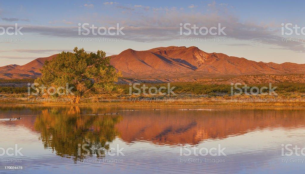 Autumn Pond and Mountain royalty-free stock photo