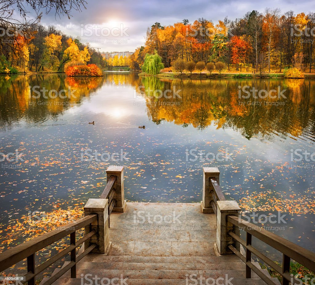 Autumn pond stock photo