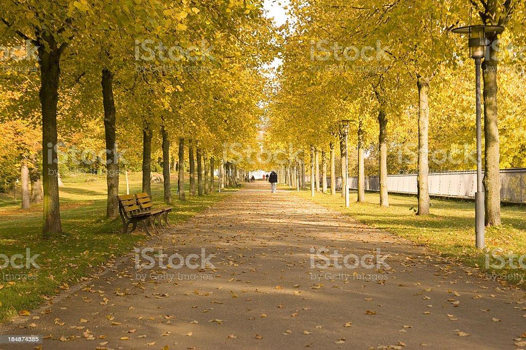Autumn Promenade royalty-free stock photo
