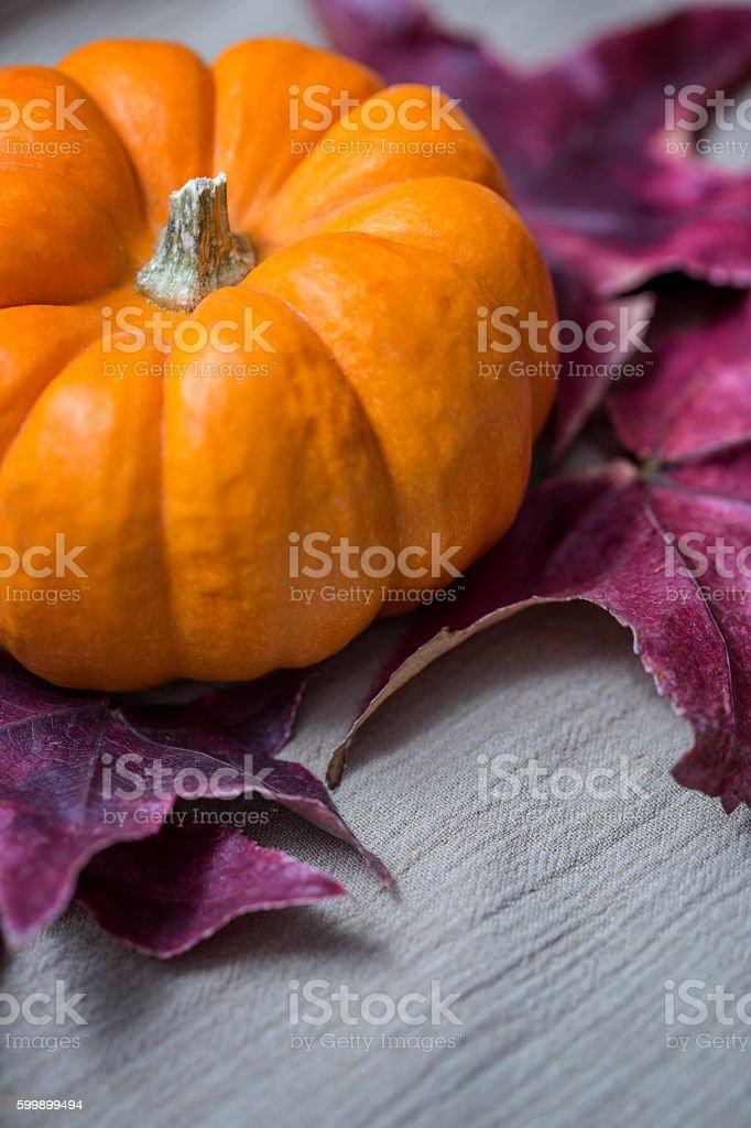 AUtumn Pumkin & Leaf on neutral colored cloth. stock photo