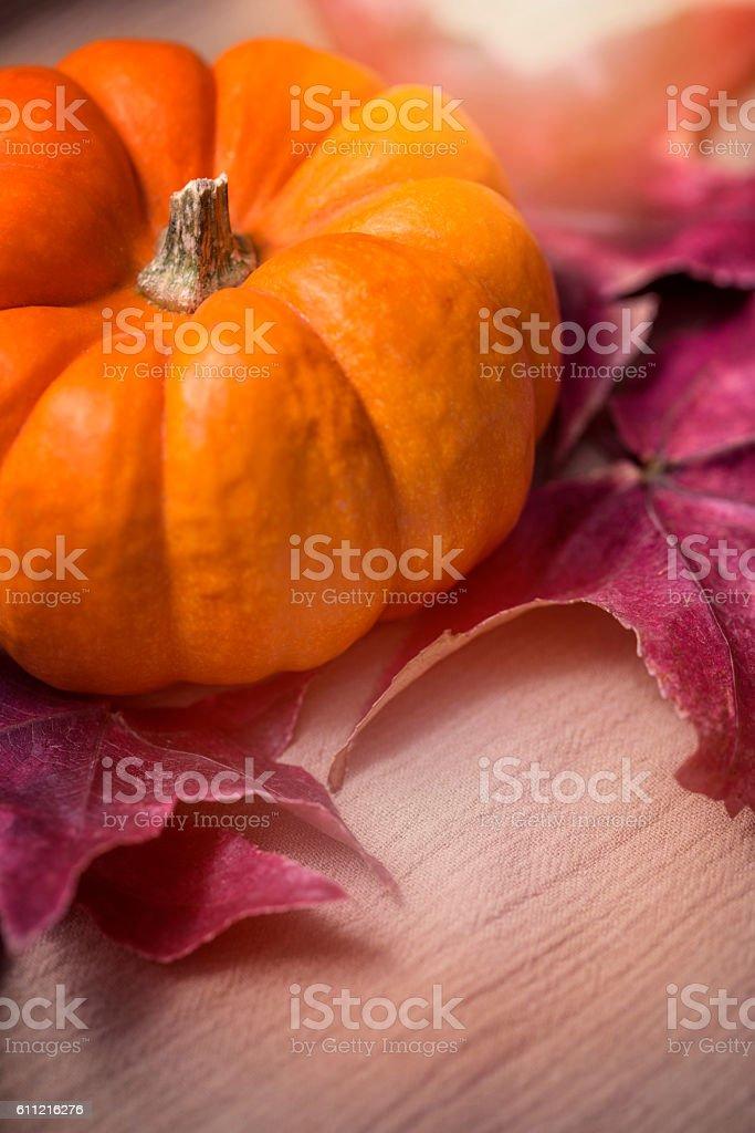 Autumn Pumkin & Leaf on neutral-colored cloth. stock photo