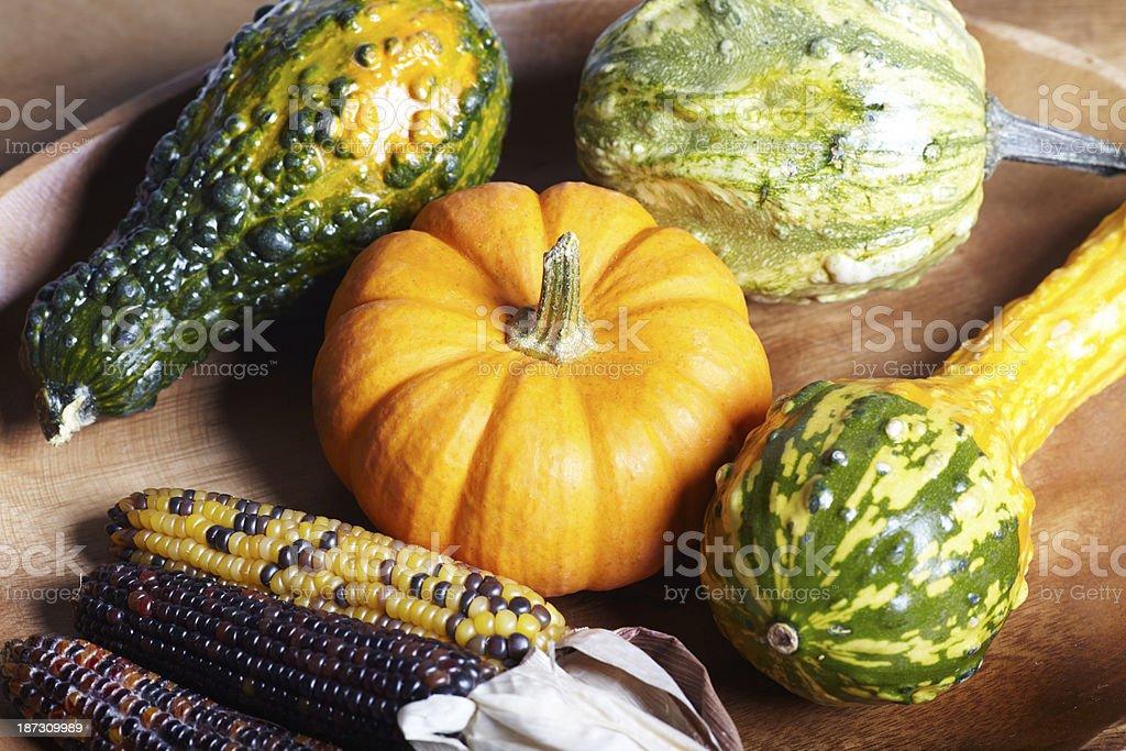 Autumn pumpkin and corn variety top view stock photo