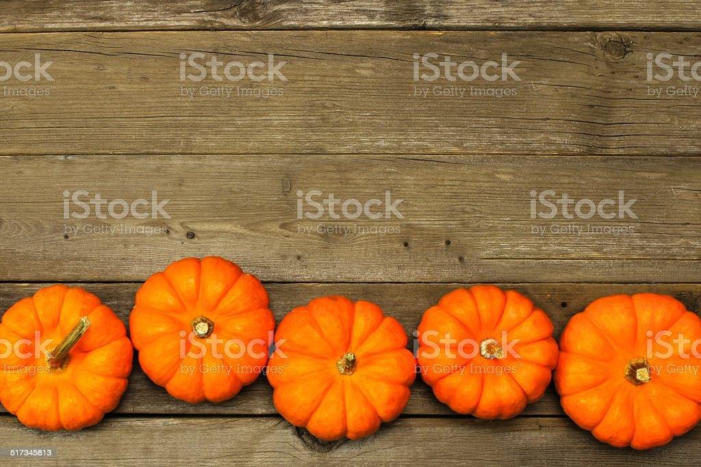 Autumn pumpkin border stock photo