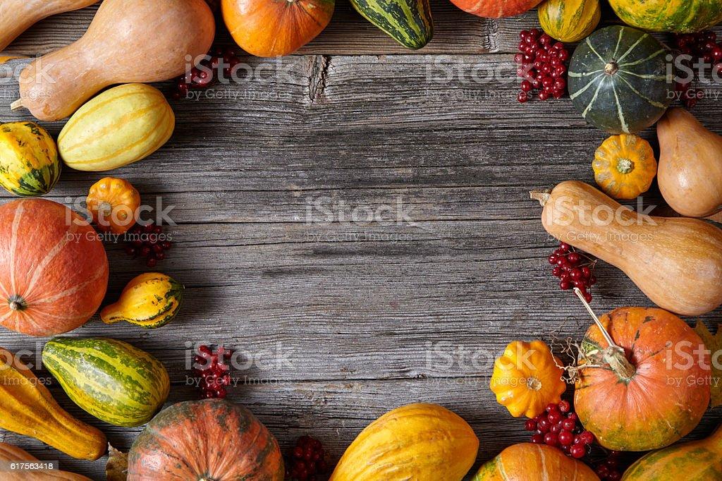 Autumn pumpkin harvest decoration frame empty blank space for design stock photo