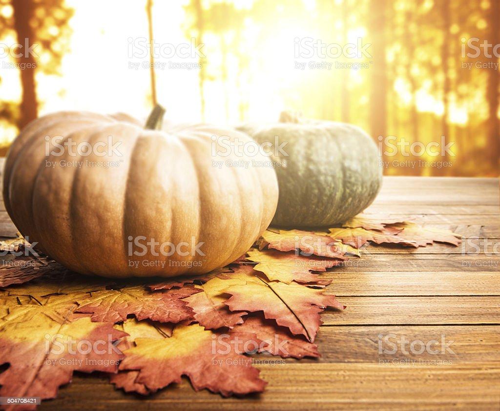autumn pumpkins on rustic wood stock photo