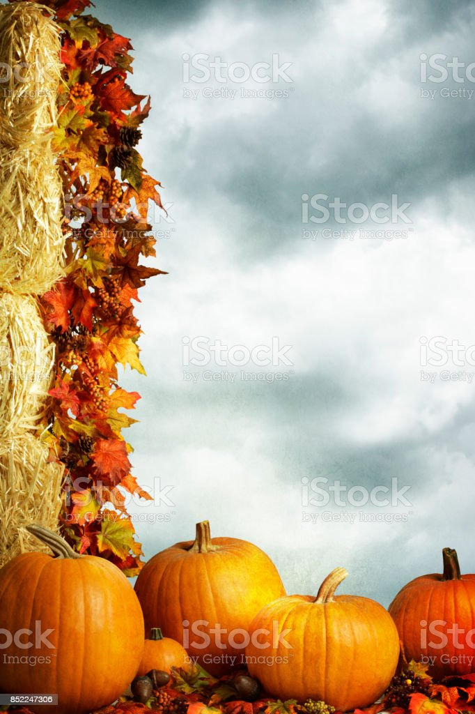 Autumn Pumpkins Sitting At Foot Of Hale Bales stock photo