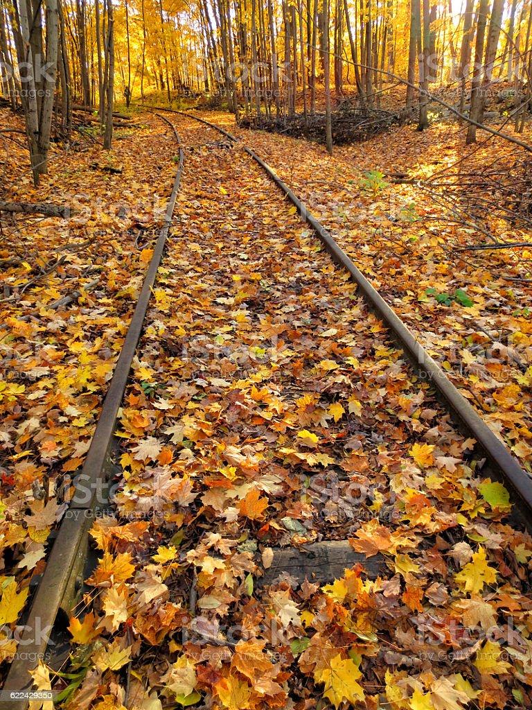 Autumn Rail Line stock photo