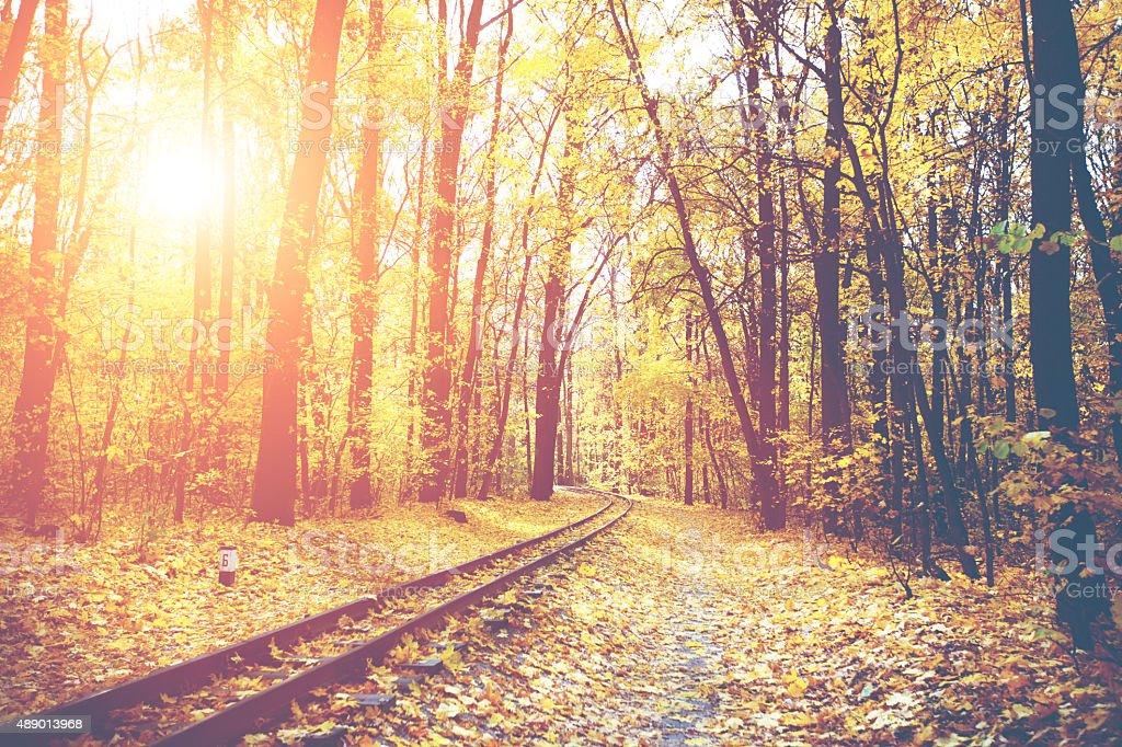 Autumn railroad stock photo