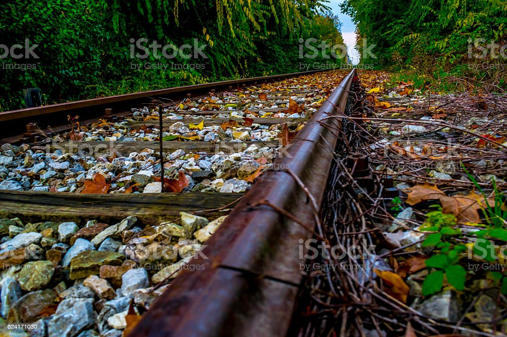 Autumn railroad track,steel covered with warm colors royalty-free stock photo