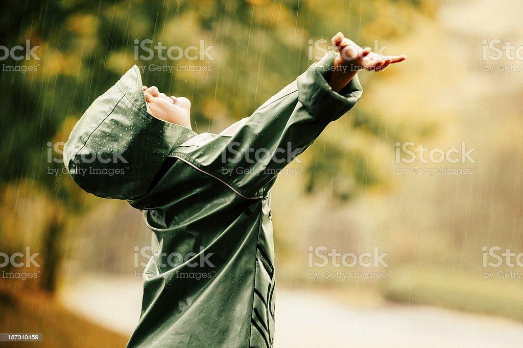 Autumn rain royalty-free stock photo