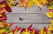 Autumn red and yellow leaves frame on rustic wood background
