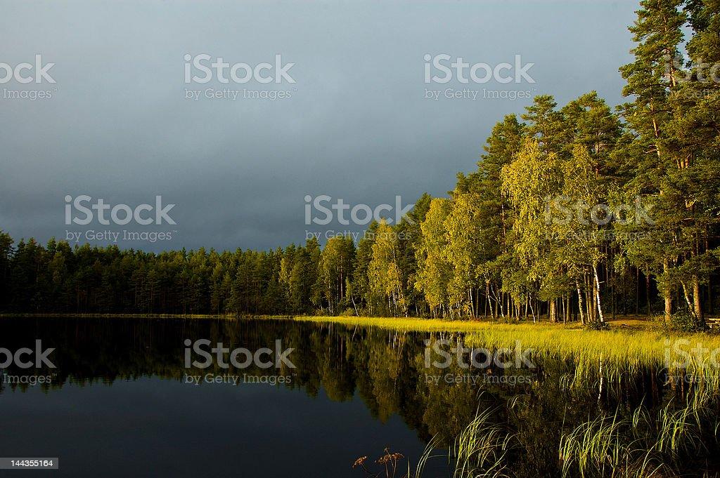 Autumn reflections 8220 royalty-free stock photo